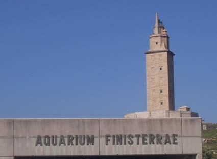 aquarium-finisterrae.jpg