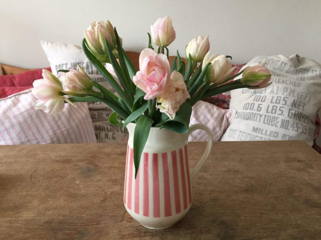 tulpen bei raumseele