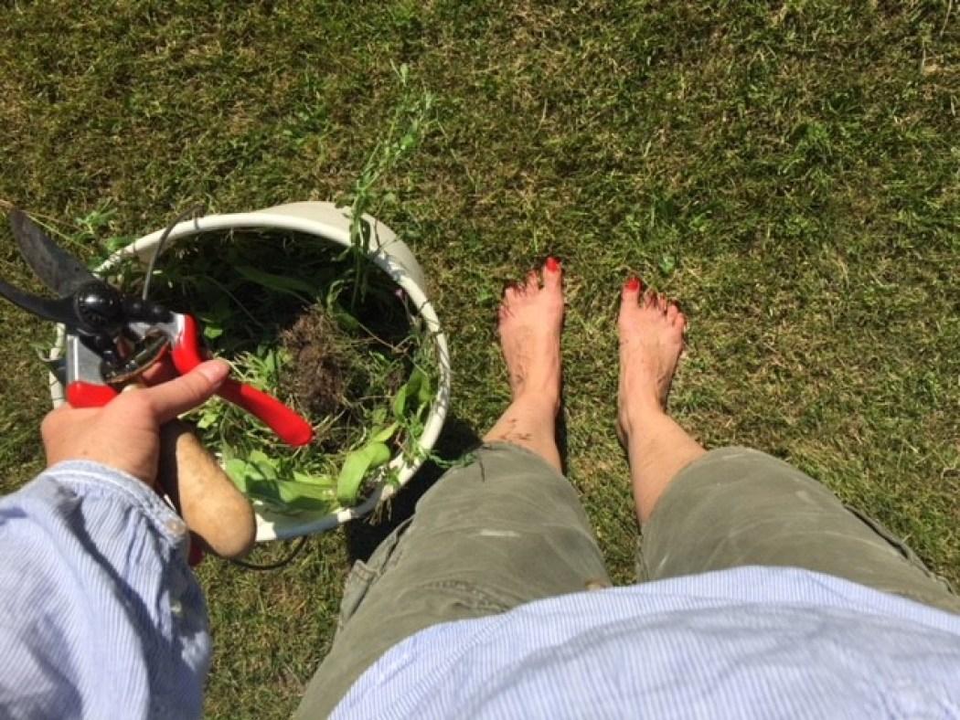 Sonntag Gartenarbeit