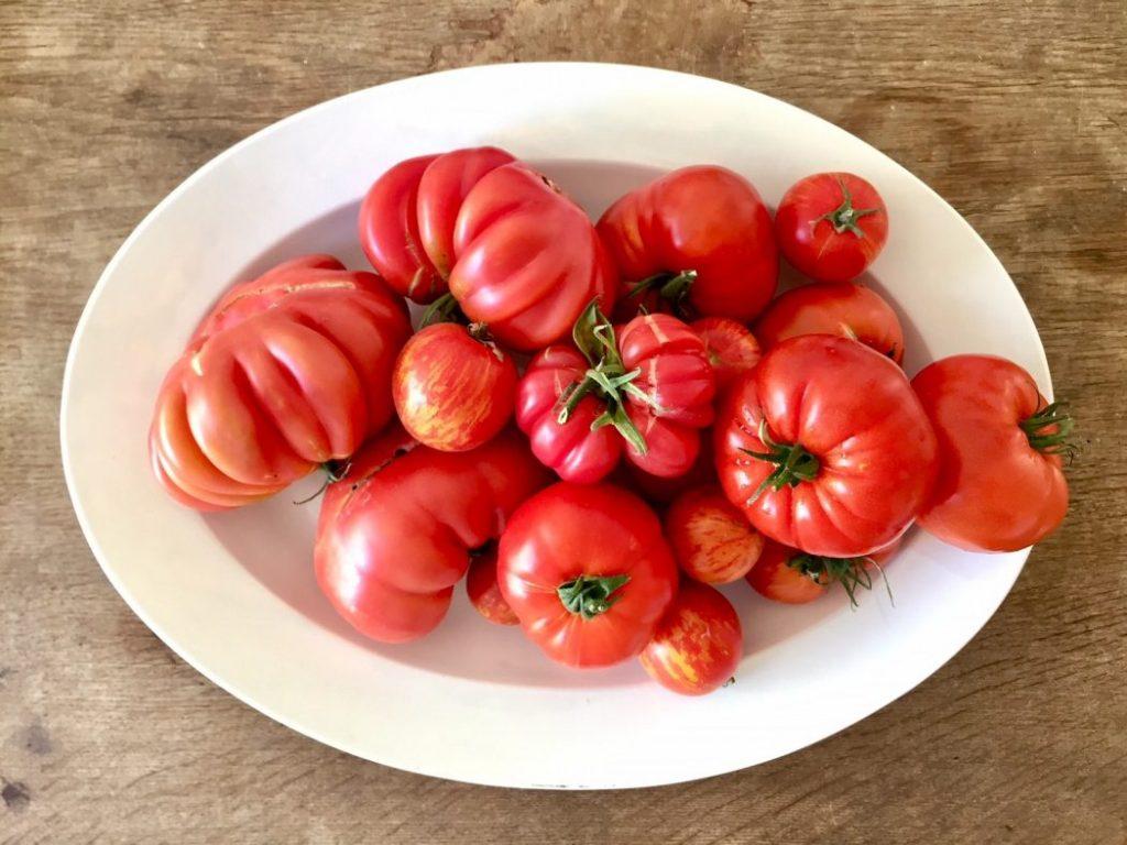 Tomaten, Tomaten, Tomaten