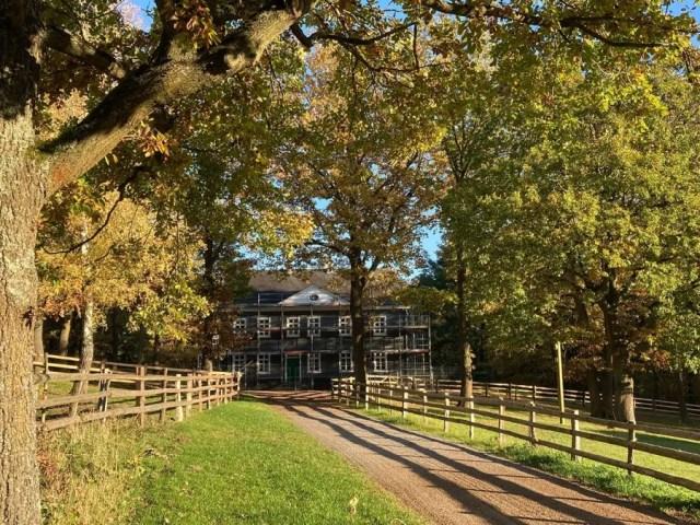 Von Bäumen gesäumter Weg, im Hintergrund sieht man das Haus Mannesmann.