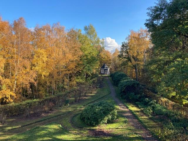 Blick auf den nach hinten schräg zusammenlaufenden Garten. Im Hintergrund sieht man das Gartenhaus.