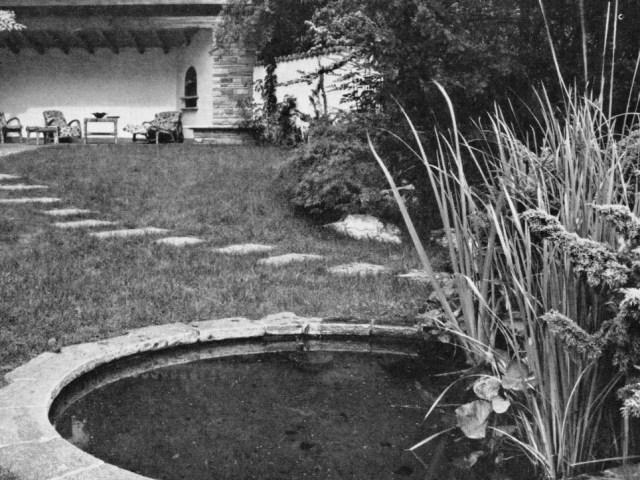 Schwarzweiß-Foto des Gartens mit Pflanzen und Teich