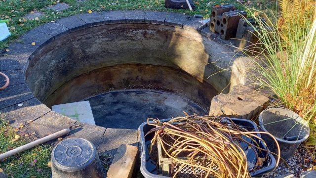 Teich mit ausgeräumten Steinen und Pflanzen