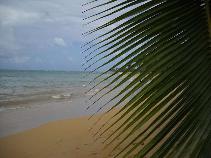 Cayamo beach