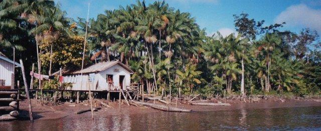 Häuser am Fluss, Breveskanäle, Amazonas Kreuzfahrt