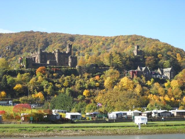 Burg Reichenstein am Rhein