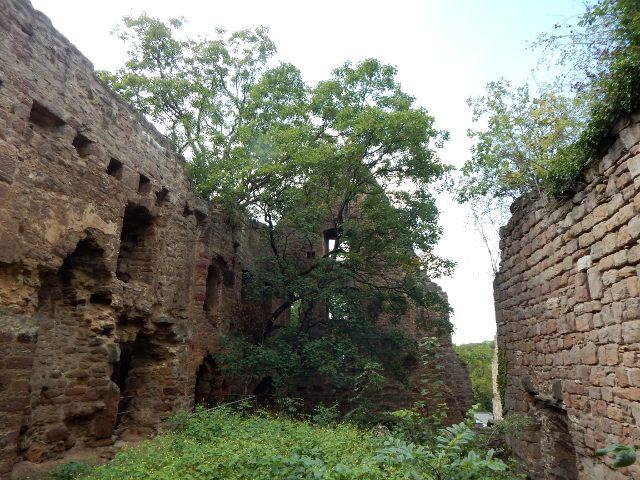 Burggraben von Burg Hardenberg in Niedersachsen