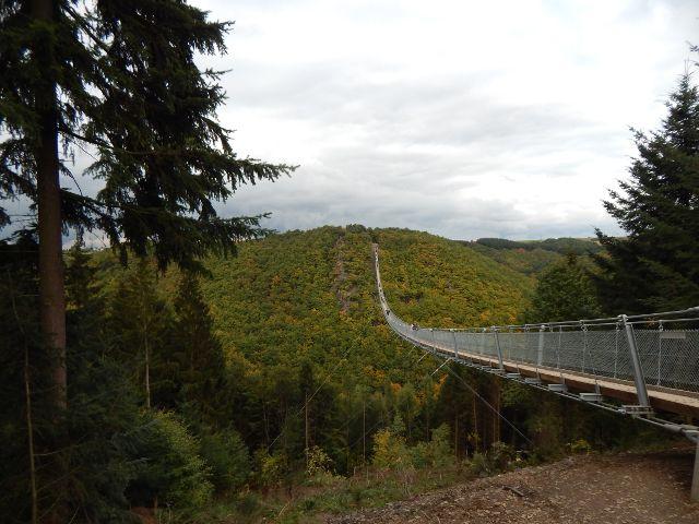Blick aus Richtung Sosberg auf die Geierlay Hängebrücke