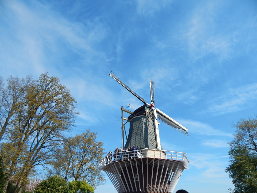 Eine Windmühle im Keukenhof in Lisse, Holland.