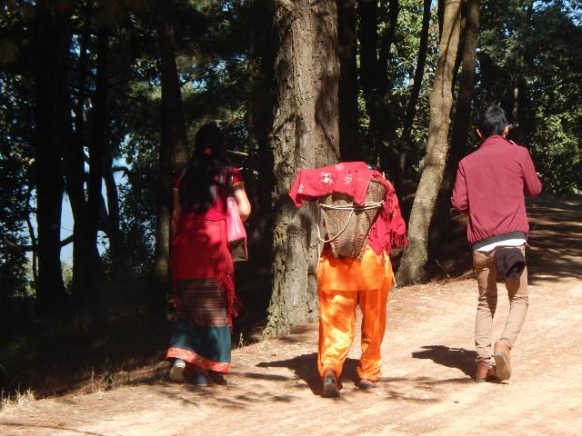 Nagarkot Frauen tragen