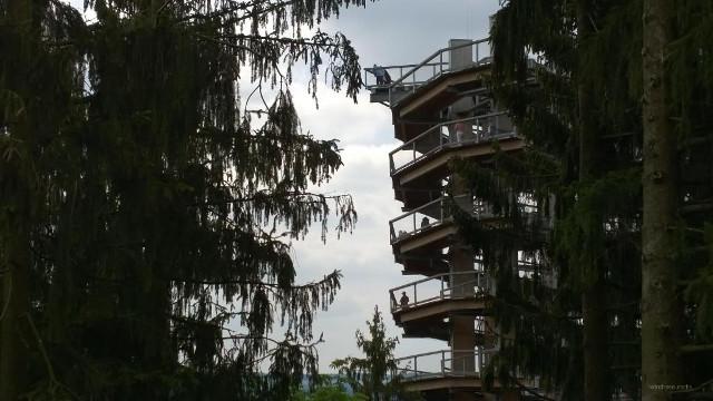 Hoch hinauf geht der Baumwipfelfad im Saarland.