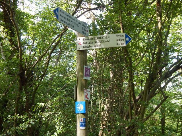 Abzweigung zum Hauptweg auf der Eisenbolz Boppard Rundwanderung