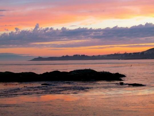 Last Shark Reef Sunset This Summer