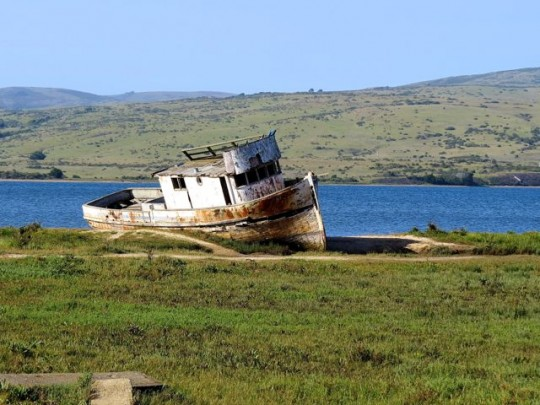 Shipwrecked In Tomales Bay