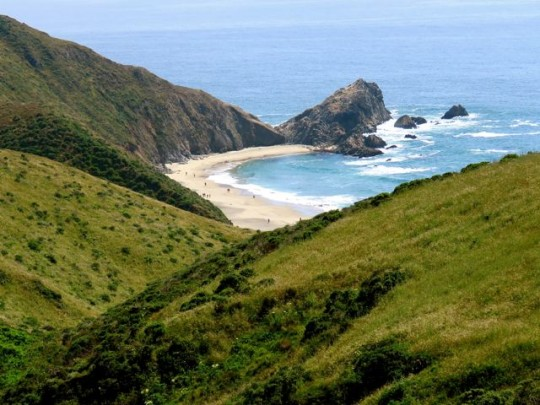 Beautiful Views On The Tomales Point Trail