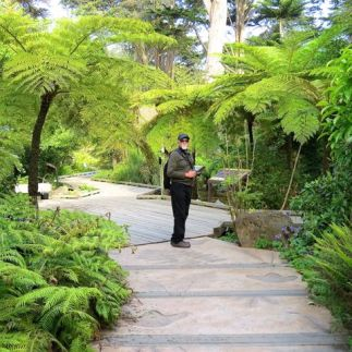 On the fern-laden trails