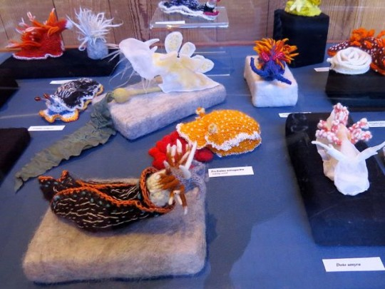 Sea Creatures Art Exhibit