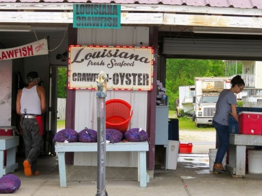 Terrific Seafood Market Near The Campground