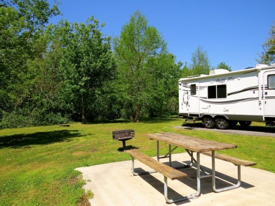 Spacious Sites At Bayou Segnette State Park