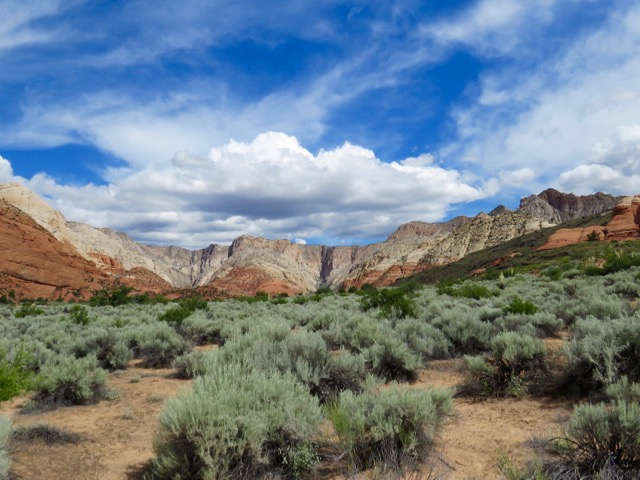 Sagebrush, Mountains And Clouds