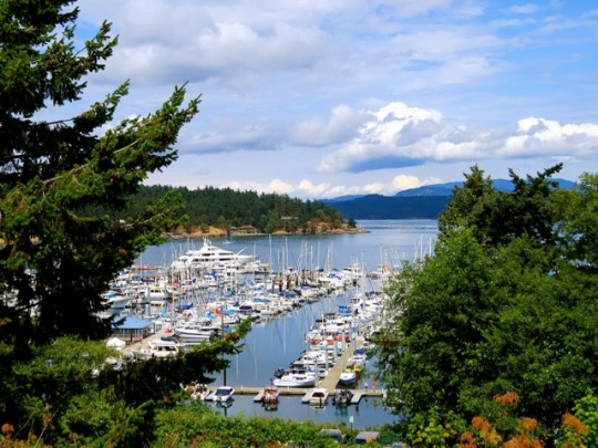 Boats Docked At Friday Harbor