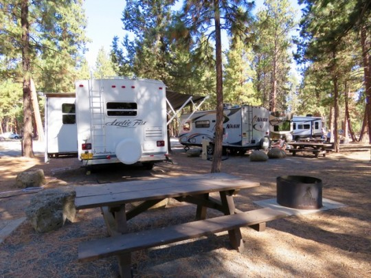 Nice Sites In The Pines