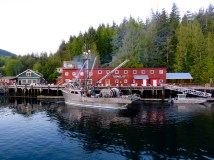 Fishing boat in Telegraph Cove