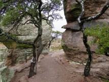 Hiking in Chiricahua National Monument, Arizona