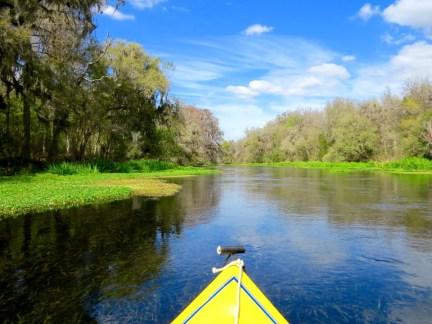 Kayaking the Ichetucknee River, Florida
