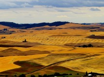The Palouse, Eastern Washington