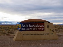 Ash Meadows Wildlife Refuge