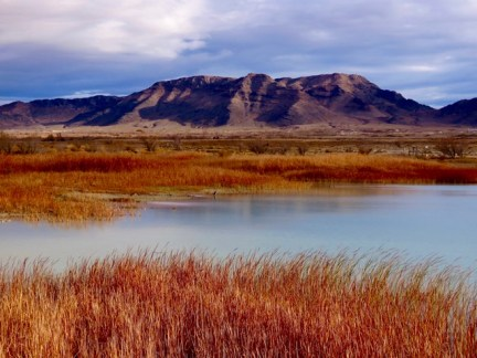 Beautiful colors at the refuge