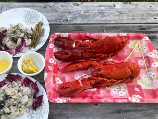 A cold summer lunch: lobster with potato salad and pickled green beans
