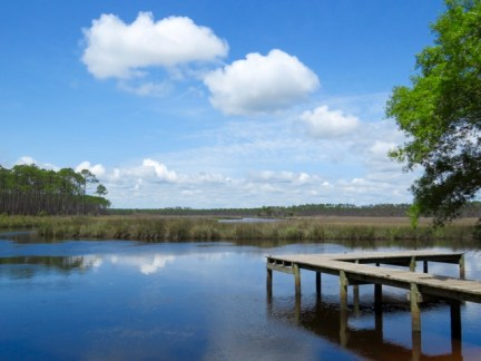 Apalachicola National Wildlife Refuge