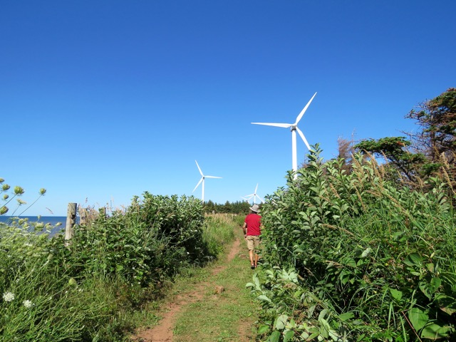 Hiking through a forest of wind turbines