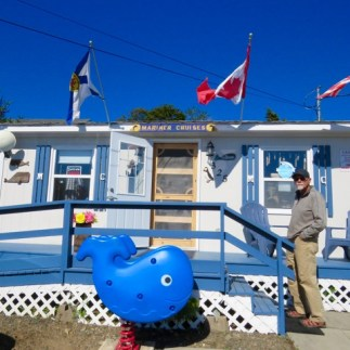 Headquarters for Mariner Whale Watching Cruises