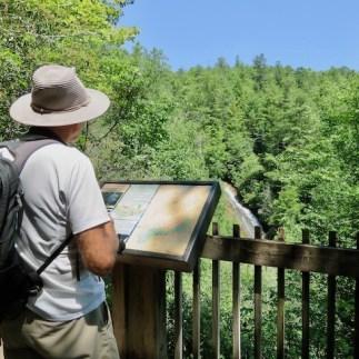 Overlooking Bearwallow Falls
