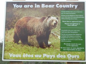 You are in Bear Country Sign at Slims West Trailhead