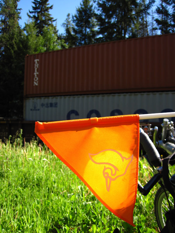 Bicycle Field Notes 1: Welican-the-Pelican Hitches a Ride