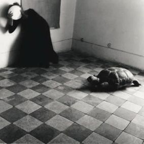 photography-by-francesca-woodman-ananas-miami-1353246083_b