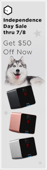 Petcube Camera Sale