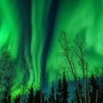 northern lights, aurora, aurora viewing, viewing the northern lights, viewing the aurora, Yellowknife, Canada, Northwest Territories, NWT