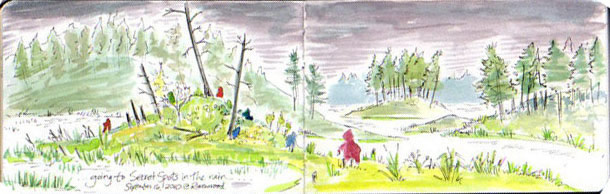 Ravenwood Nature Illustration Self Community Camp Rain