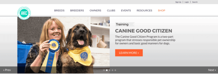The Best Pet Websites for 2019 | RAVE Reviews
