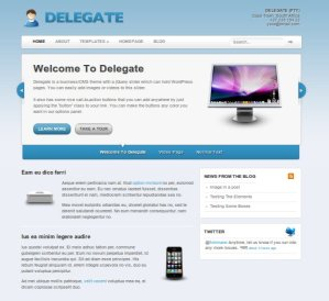Delegate premium WordPress theme for business from woo themes