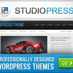 Why I use premium WordPress themes?