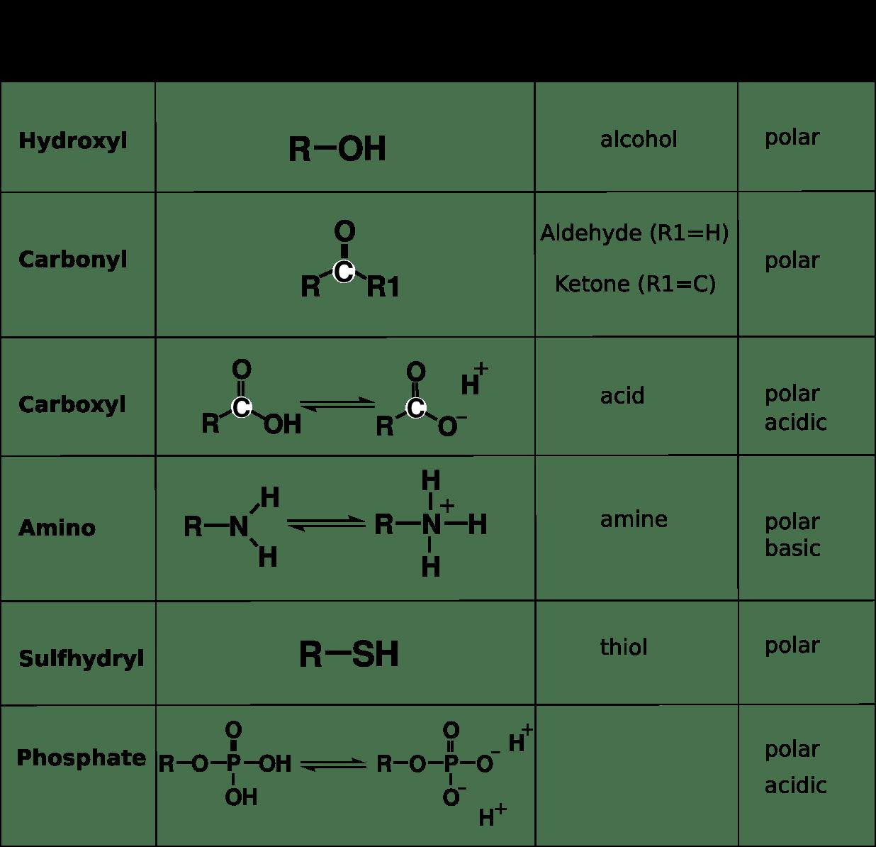 6 Organic Chemistry