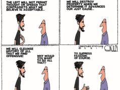 Liberal Lunacy on BLM, Antifa and 'Fascism' Summed Up By One Cartoon