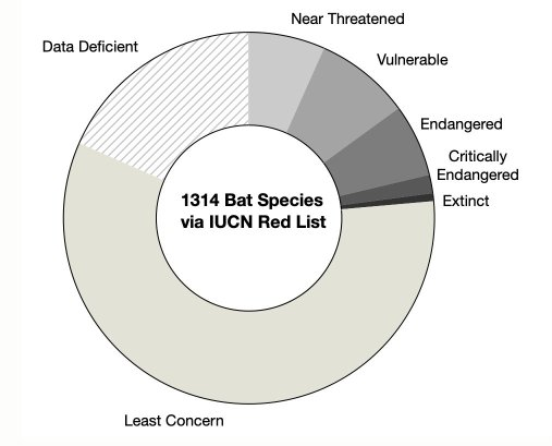 Pie chart of bat species endangerment levels.